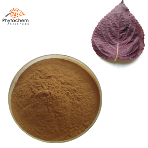 perilla leaf extract