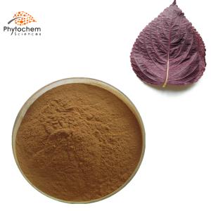 perilla leaf extract