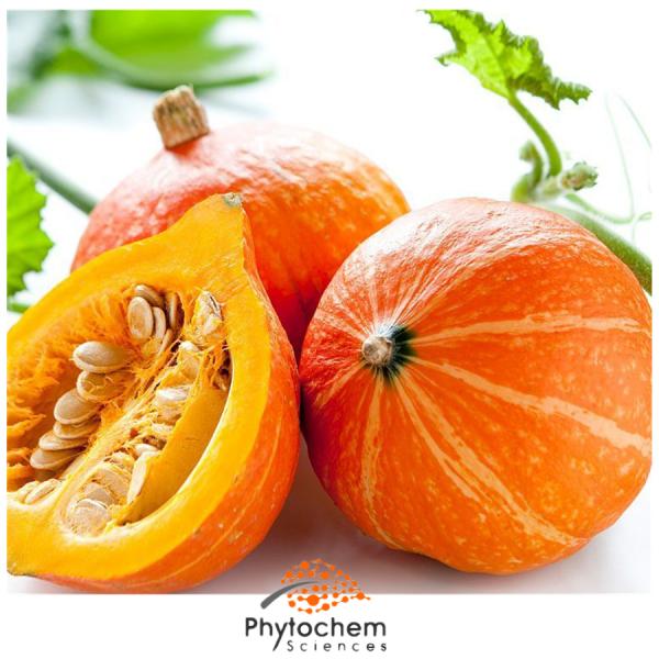 pumpkin seed extract supplement
