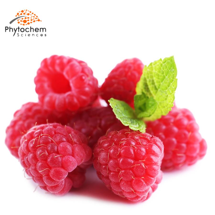 raspberry extract benefits