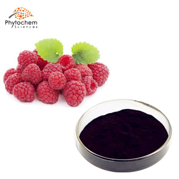 red rasred raspberry extractpberry extract