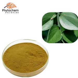 ruscus aculeatus extract powder