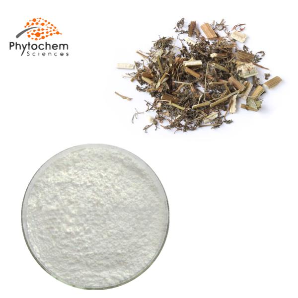 sweet wormwood extract powder