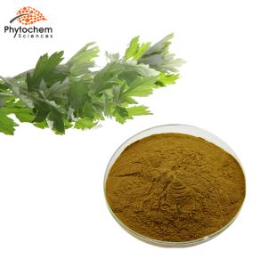 wormwood extract powder